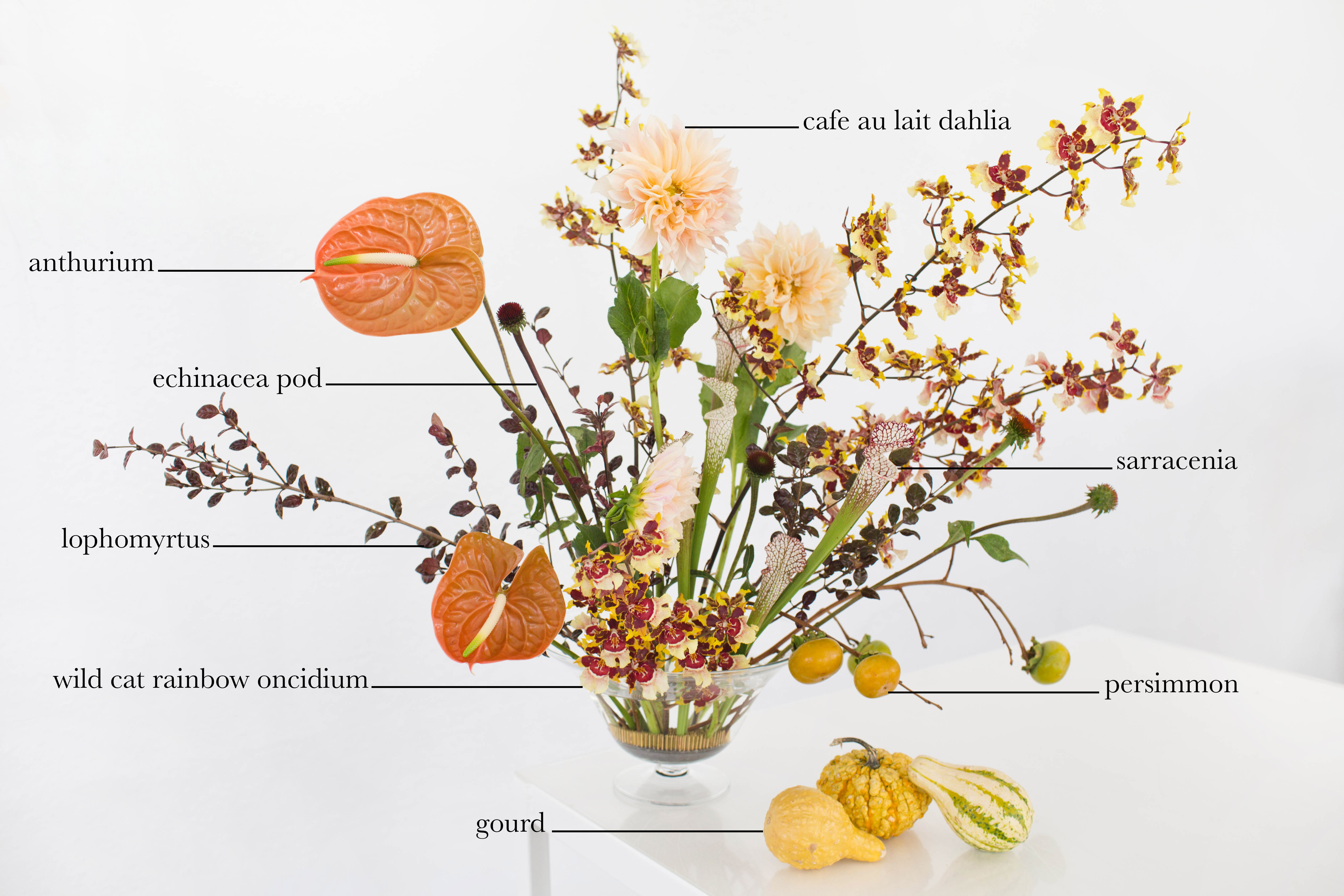 Floral Encyclopedia with Moon Canyon: An Arrangement in Autumn Hues 0