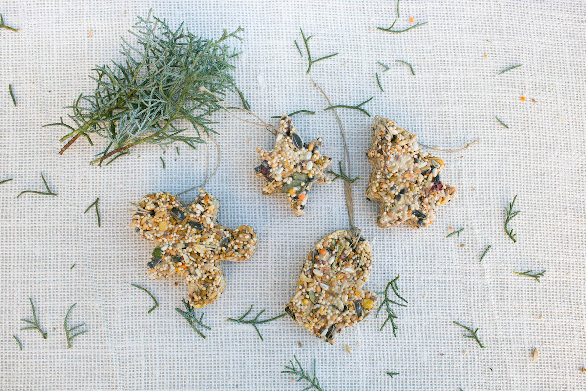 DIY: Bird Seed Ornaments with Amy Blessing 3