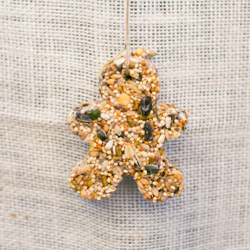 DIY: Bird Seed Ornaments with Amy Blessing