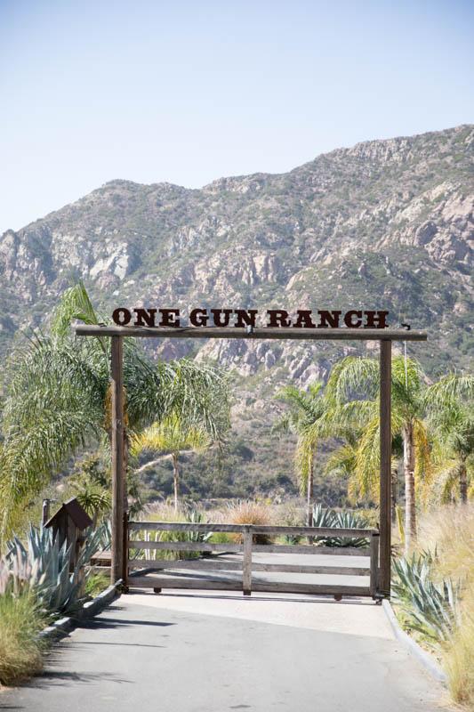 The Malibu City Guide