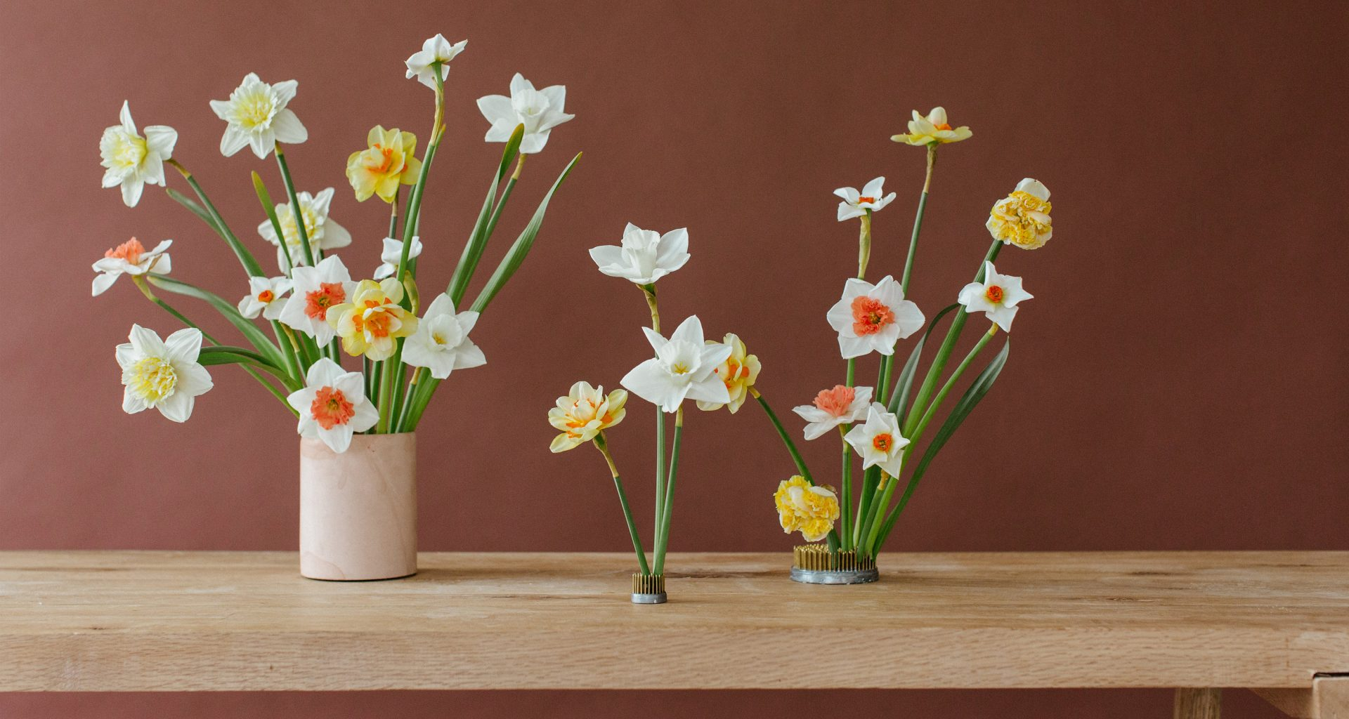 The Definitive Guide to Daffodils