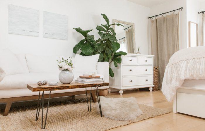 How to Make 300 Square Feet Feel Like Home