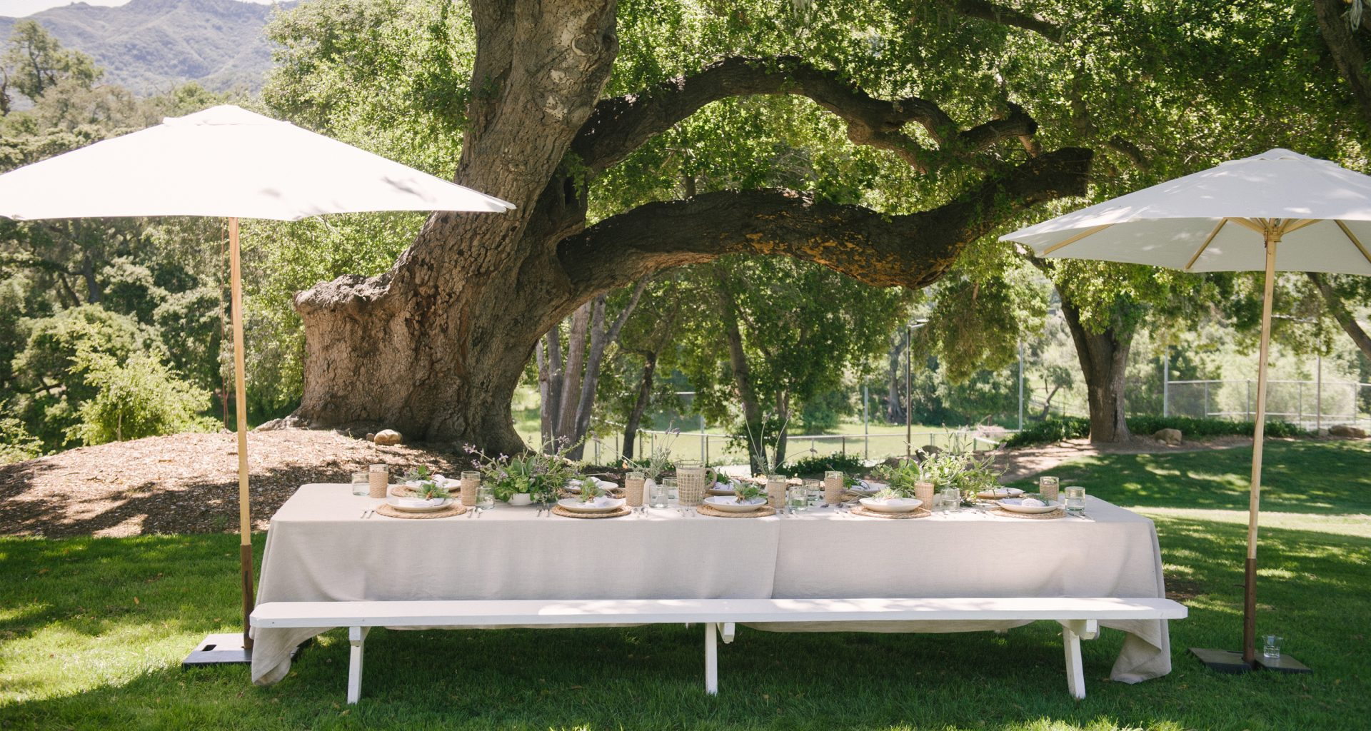 The Cheat Sheet to Early Summer Entertaining