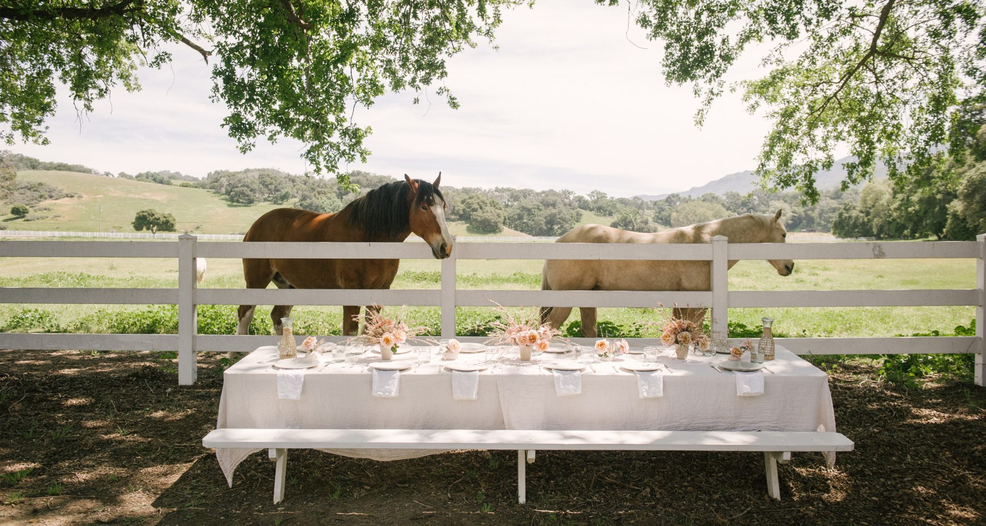 How to Host the Summer Gathering of Your Dreams