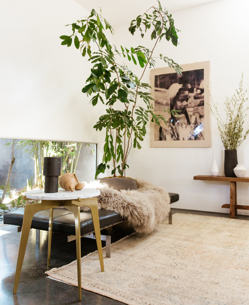 Fall's Best Home Accessory Works in Every Room